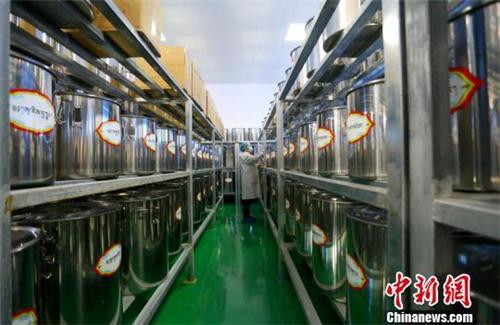 甘肃甘南藏医药在传承中发展走向国内外