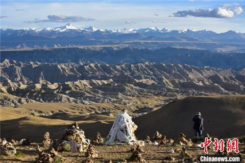 植物化石揭示了青藏高原西端的干旱化过程1.jpg