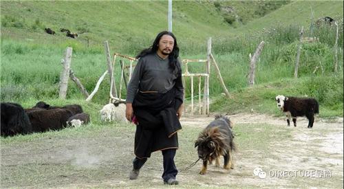电影藏语与藏语电影