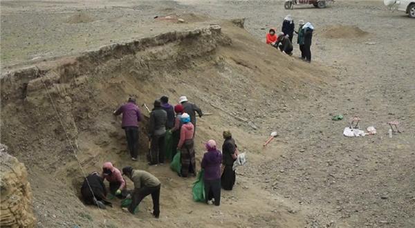 史前遗址新发现 看西藏最新考古成果5.jpg