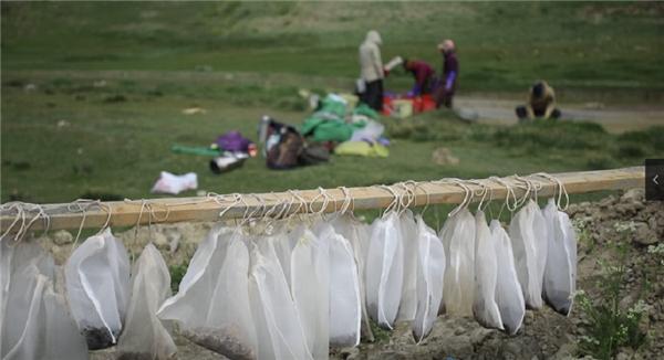 史前遗址新发现 看西藏最新考古成果