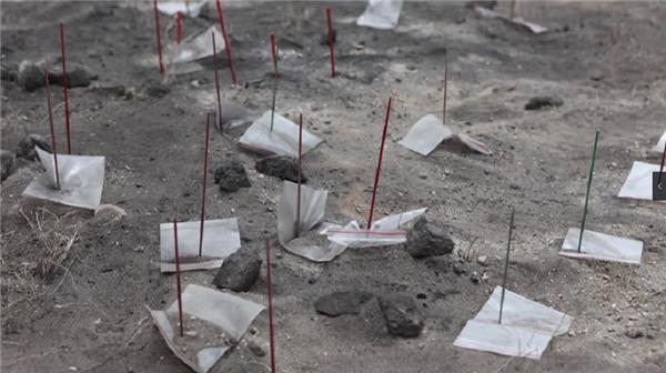 史前遗址新发现 看西藏最新考古成果12.jpg