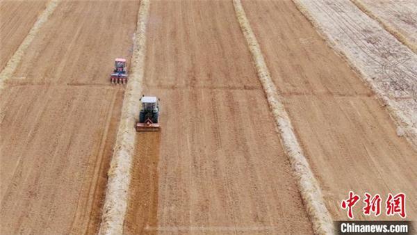 青海省:上万亩藜麦在柴达木盆地开始播种