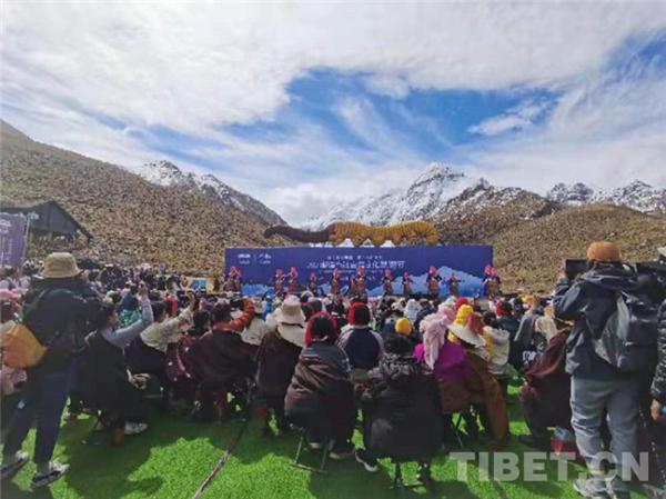 西藏当雄县举办虫草文化节及虫草品牌发布会