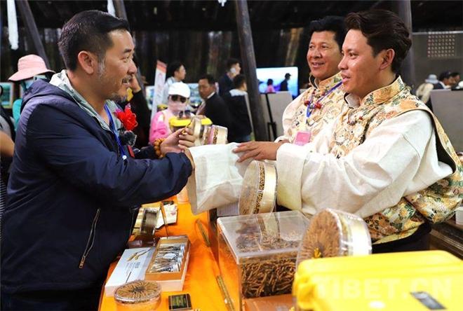 西藏比如县冬虫夏草展销会交易额达6211.62万元