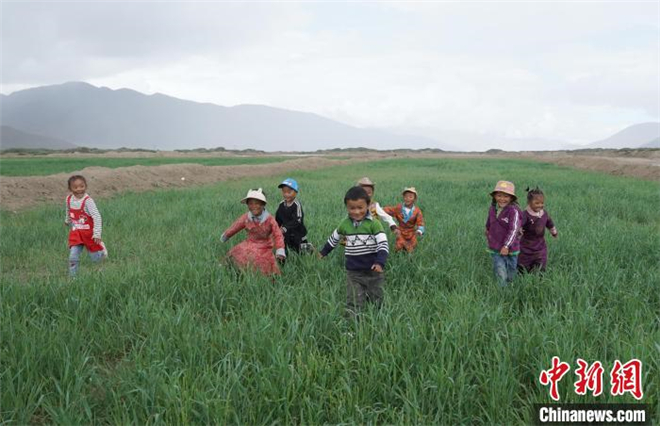 """2021""""种草·喜马拉雅""""公益活动在西藏拉孜举行"""