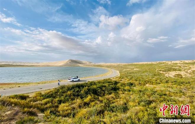 青海湖沙岛关停四年:生态恢复至历史最佳水平