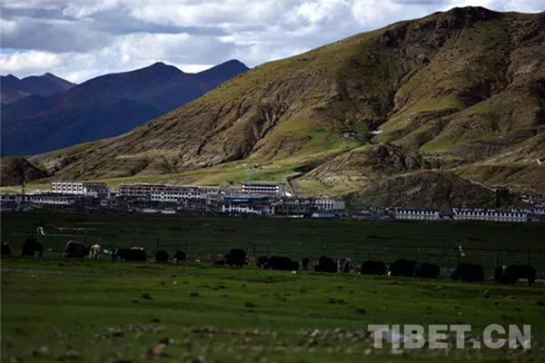 西藏牧民沿袭数千年传统轮牧制度中的生态智慧2.jpg