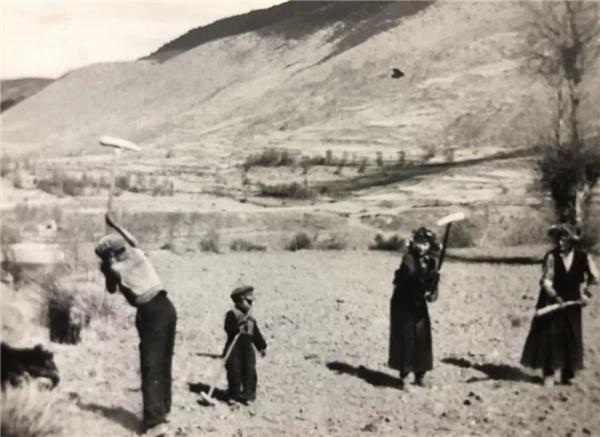 藏族著名摄影家根秋多吉镜头下的藏区巨变