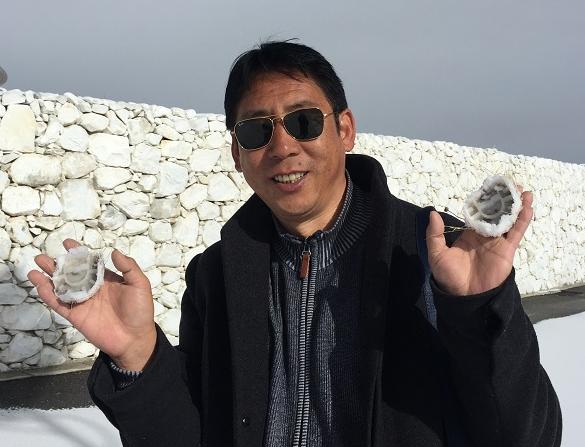 藏区的乡土中篇小说:《太吉梅朵》(作者: 洼西)