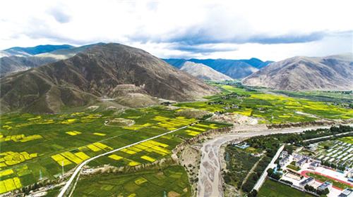 西藏大力推进湿地保护与恢复建设管理工作.jpg