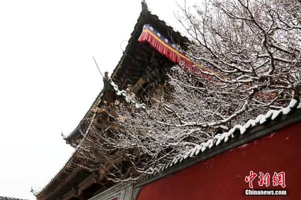 """青海塔尔寺""""朝佛季"""":瑞雪点缀藏传佛教圣地5.jpg"""