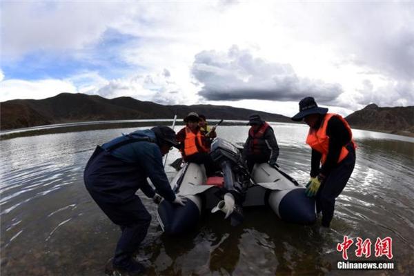 中国二次青藏科考分队完成海拔4300米浪错采样1.jpg