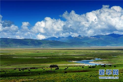 2020四川甘孜山地文化旅游节将于7月29日在理塘县开幕2.jpg
