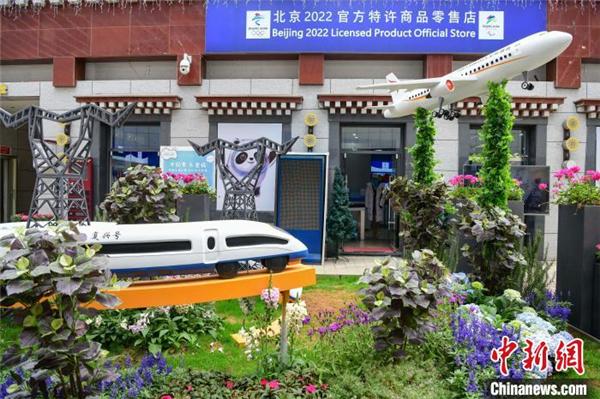 西藏首届花卉艺术旅游文化开幕 数万鲜花绽放雪域高原3.jpg