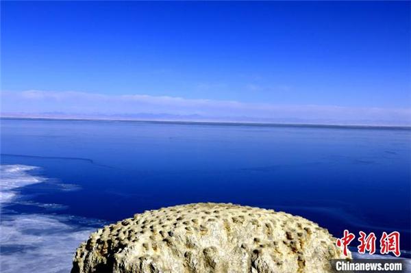 """青海湖潜水区域首次实现""""无人船""""定位采样.jpg"""