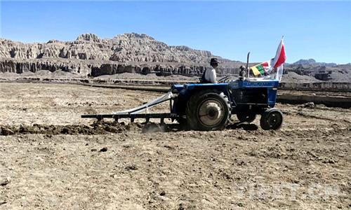 西藏古格遗址下,古老糌粑飘香群众致富路1.jpg