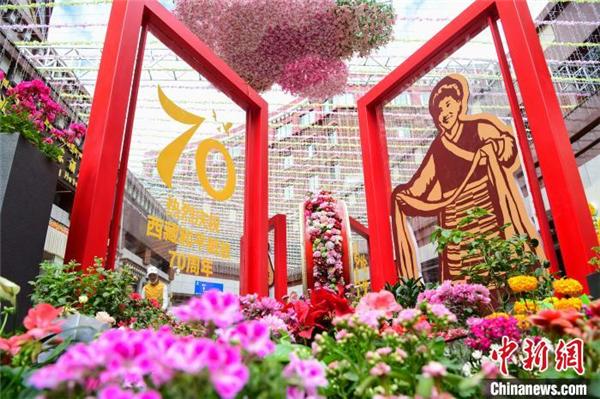 西藏首届花卉艺术旅游文化开幕 数万鲜花绽放雪域高原4.jpg