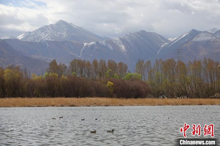 世界海拔最高的城市内陆天然湿地拉鲁湿地对外开放