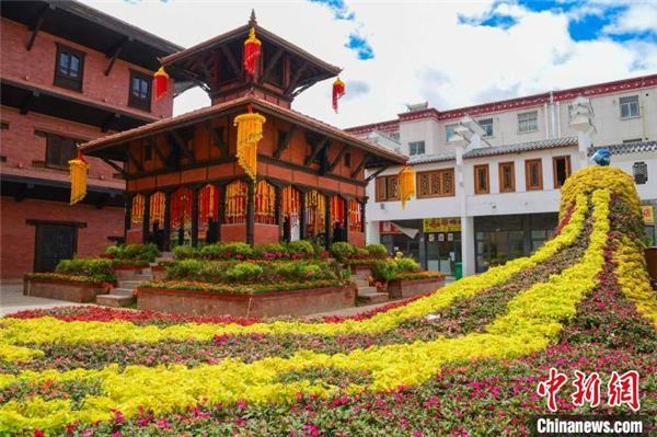 西藏首届花卉艺术旅游文化开幕 数万鲜花绽放雪域高原1.jpg