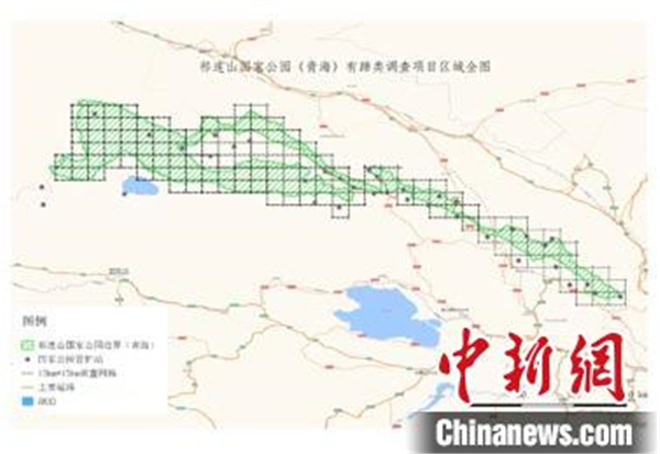 祁连山国家公园首次开展有蹄类动物专项调查.jpg