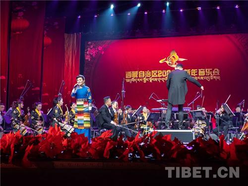 西藏唱响新年音乐会2.jpg