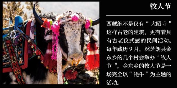 卡布:理解生活方式,了解生活仪式2.jpg