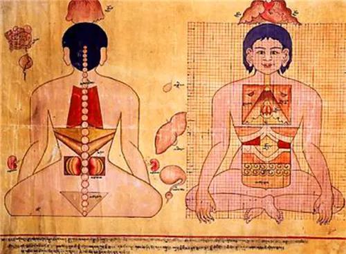 藏医人体解剖学的科学思想试析.jpg