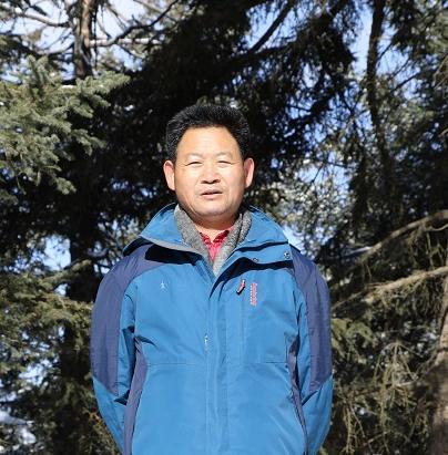 杨旭明散文:青稞,屹立在高原之上