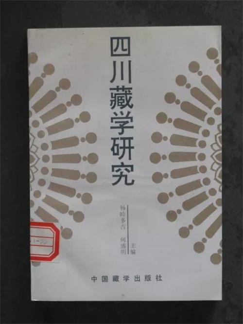 杨岭多吉3.jpg